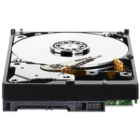 WD Desktop Green 1TB HDD Sata 6Gb/s cietais disks