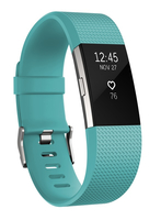 Fitbit Charge 2 Small tea / silver sporta pulkstenis