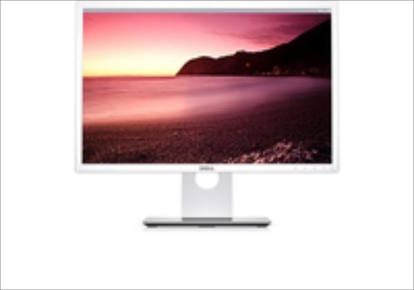 Dell Professional P2217WH monitors