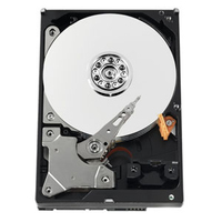 Western Digital AV GreenPower 320GB SATA cietais disks