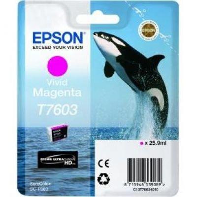 Ink Epson Singlepack Vivid Magenta | SureColor SC-P600 kārtridžs