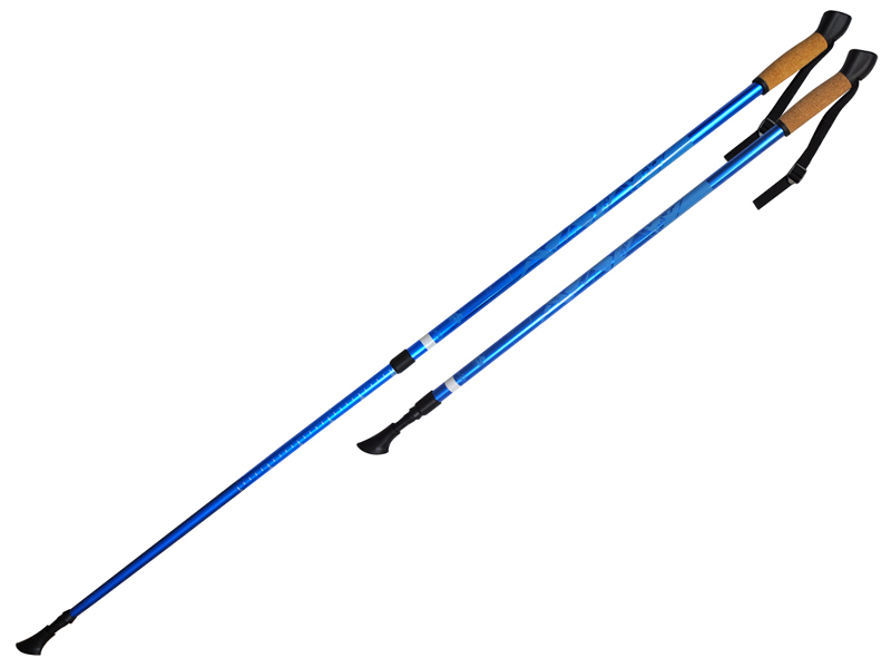 Axer Nordic Walking Poles Speed Blue A23242