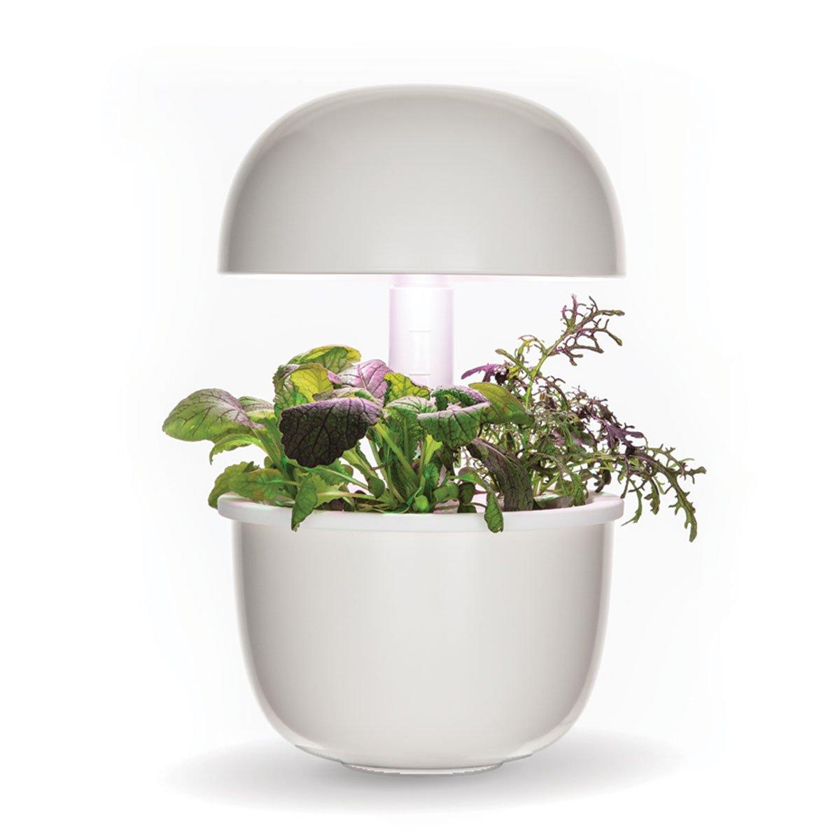 Plantui 3e Smart Garden - White