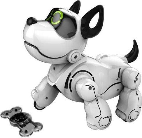 Dumel Pupbo