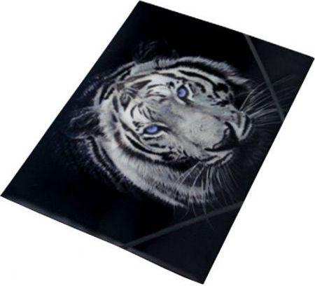 Panta Plast Teczka na gumke A4 z nadrukiem Tiger (231803) 231803