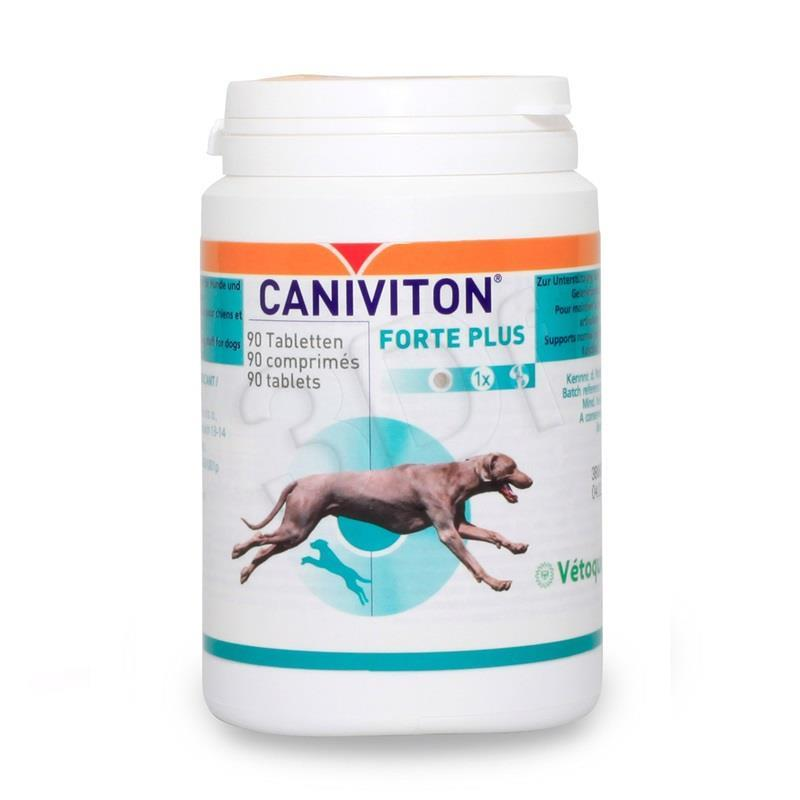 Feed Vetoquinol Caniviton For Plus AMABEZKAR1354