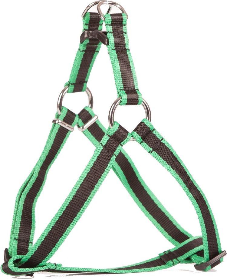 Dingo Fred nr 50 szer. 16 mm Zielono-czarne (93388) 93388