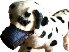 Ami Play Kaganiec   XS (N1) Yorkshire Terrier 14-17 [a] x 17-28 [b] cm Niebieski 5906160227194