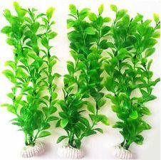 ATG Roslina standardowa zielona 18-22cm VAT004418