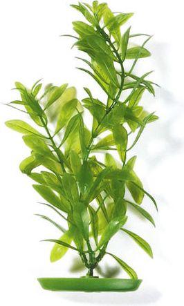 HAGEN Roslina Hygrophila-zielona 30cm 010616