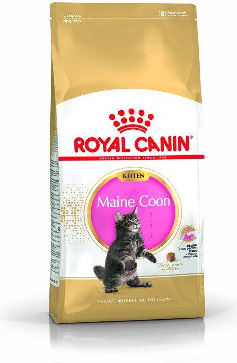 Royal Canin Kitten Maine Coon 4 kg kaķu barība
