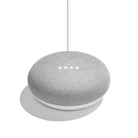 Google Home Mini Chalk Smart Speaker Assistent