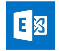 Microsoft Exchange Enterprise CAL 2016 User MOLP programmatūra