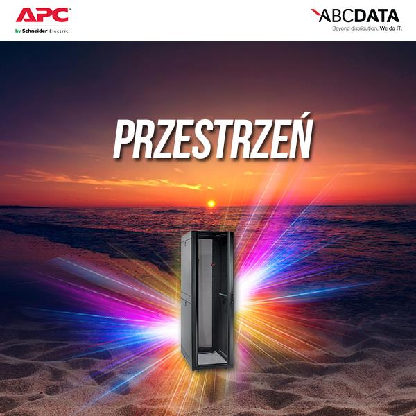 NetShelter SX 42U 600mm Wide x 1070mm Deep Enclosure serveris
