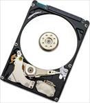 HGST Endurastar J4K320 80GB HDD cietais disks
