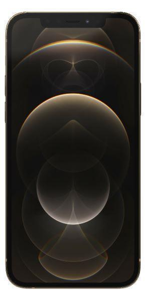 Apple iPhone 12 Pro 256GB Gold Mobilais Telefons