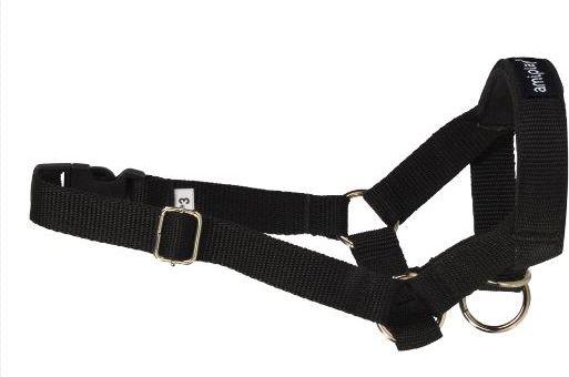 Ami Play Halter Basic L (N4) Labrador 20-37 [a] x 45-60 [b] x 2 cm Black aksesuārs suņiem