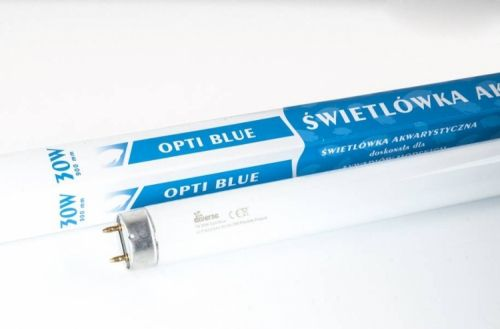 Diversa SWIETLOWKA T8 BLUE 30W