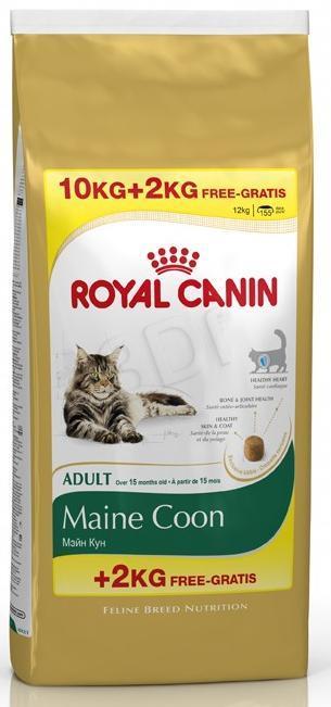 Royal Canin FBN Maine Coon 31 - 10 kg + 2 kg kaķu barība
