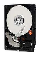 WD Blue, 2.5'', 1TB, SATA/600, 5400RPM, 128MB cache, 7mm BULK cietais disks