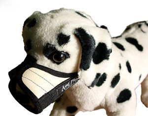 Ami Play Kaganiec XS (N1) Yorkshire Terrier 14-17 [a] x 17-28 [b] cm Bezowy 5906160227132