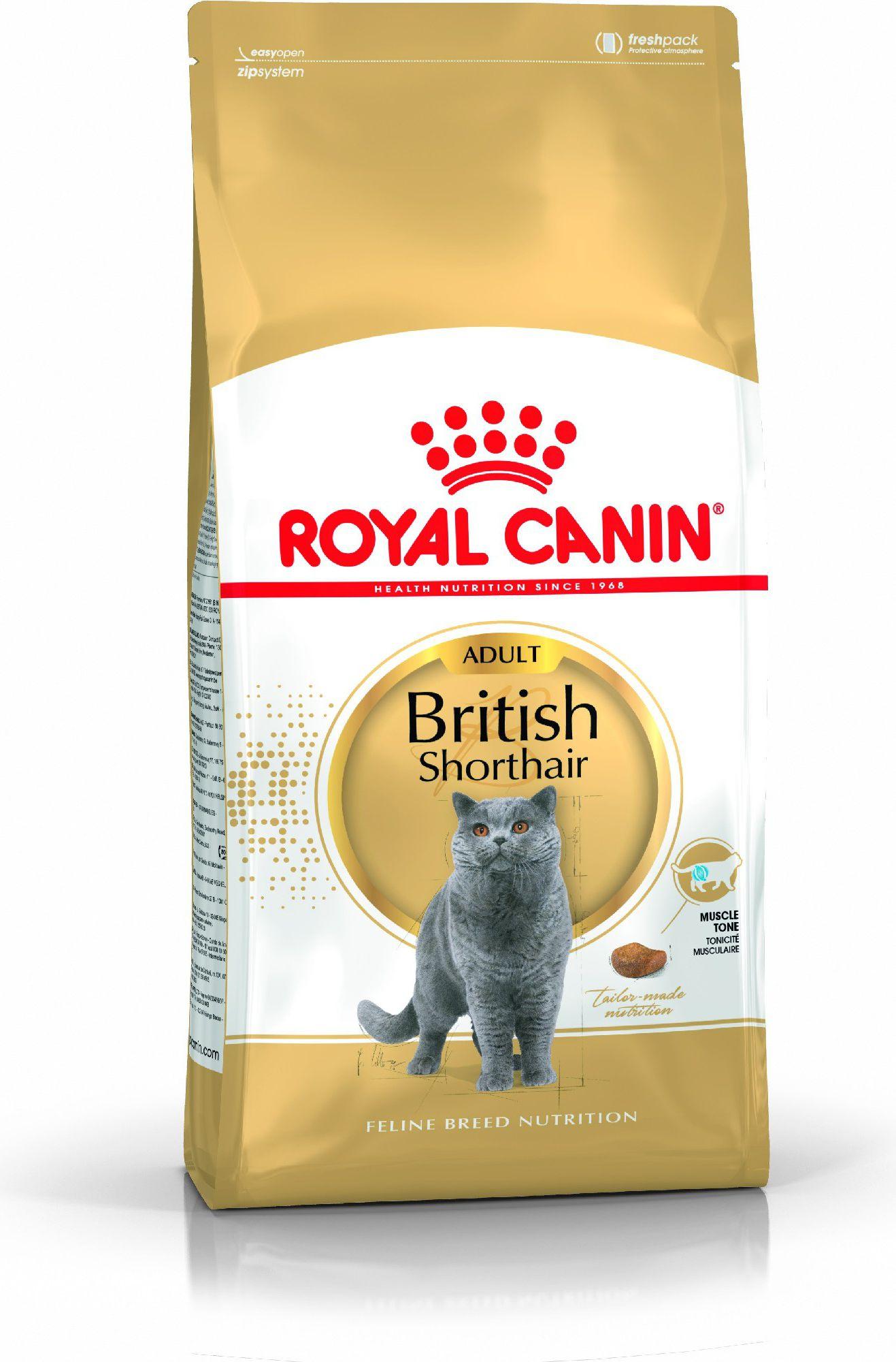 Royal Canin British Shorthair 10kg kaķu barība