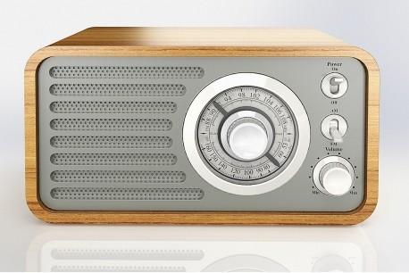 Eltra Radio Beskid grey radio, radiopulksteņi