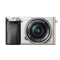 Sony A6000 Standard Zoom kit, Silver Digitālā kamera