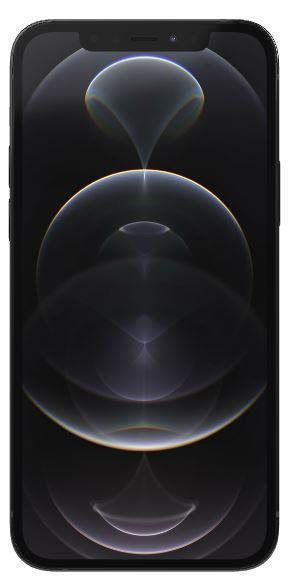 Apple iPhone 12 Pro 256GB Graphite Mobilais Telefons