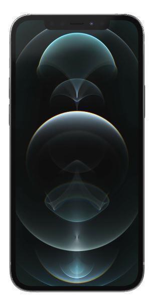 Apple iPhone 12 Pro - Silber - 5G - 256 GB - CDMA / GSM - Smartphone 194252039397 Mobilais Telefons